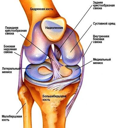Артроз коленного сустава нетрадиционные методы лечения
